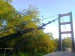 kabel yang menegang pada pylon